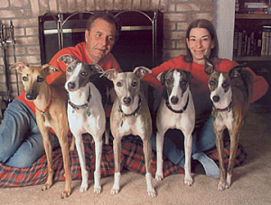 DelMaggieWhippets